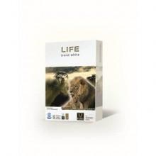 Carta per fotocopie A4 Primus Life Riciclata ISO 80 500 ff 01A480LIFE (Conf.5)