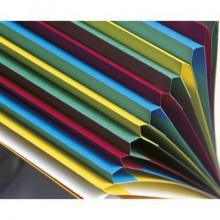 Classificatore Harmonika® 12 divisori - 24,5x32 cm rosso 55125E