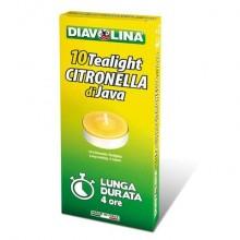 Candele alla citronella di Java Diavolina Tealight - durata 4 ore - Astuccio 10 pezzi - 15550