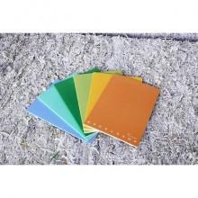 Quaderno Pigna Maxi Monocromo Green 42 ff 80 gr - A4 rigatura 1R - copertine assortite - conf. 10 pezzi - 02309781R