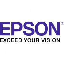 Serbatoio inchiostro 102 Epson giallo  C13T03R440