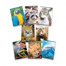 Quaderno 42 fogli PIGNA Animal A4 a righe 0A con margine assortiti 02302830A (Conf.10)