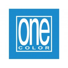 Quaderno spirlato Maxi One Color PPL Forato 80 Gr A4 80+1 ff quadretti 5 m - colori assortiti - 2935