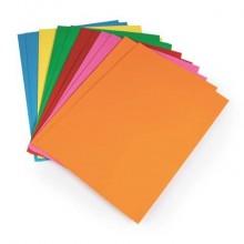 Cartellina semplice Brefiocart Color 24,5x35 cm cellulosa 200 g/m² arancio Conf. 50 pezzi - 0205510.AR