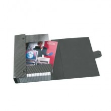 Cartelle portaprogetti Esselte C04 DELSO LINE 25x35cm grigio dorso 4 cm 390304040 (Conf.5)